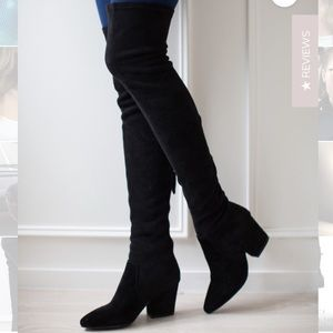 Goodnight macaroon suede thigh high boots